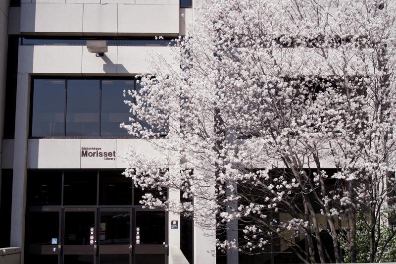 Bibliothèque Morisset, Université d'Ottawa